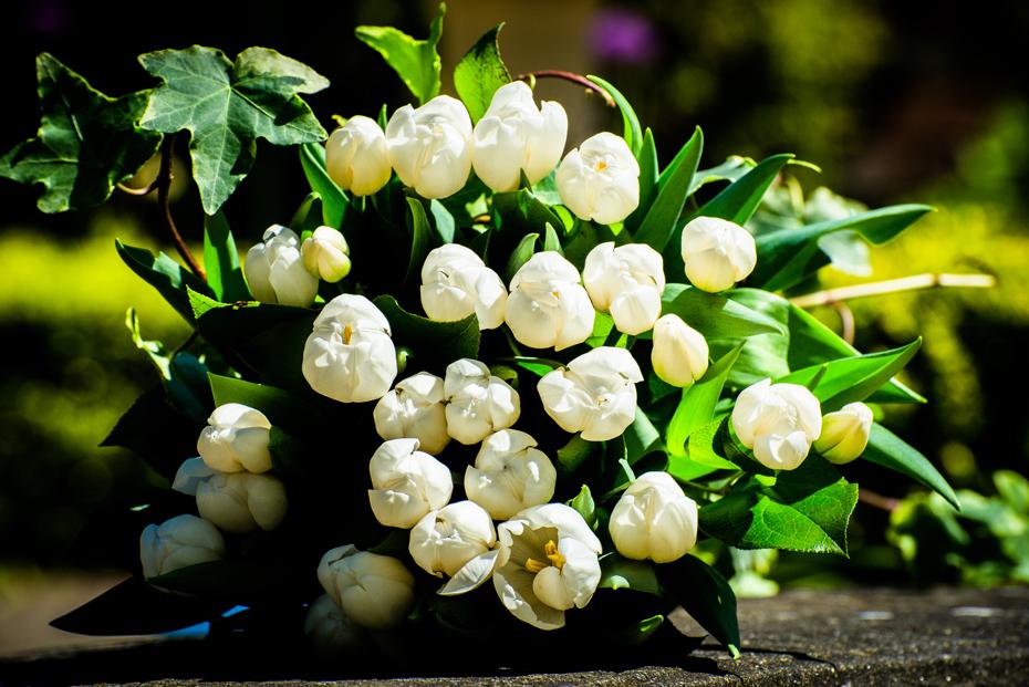 Junes Florist, Southport